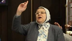 """وزير التنمية المحلية يتلقى 3 طلبات من النائبة """"شيرين فراج"""""""