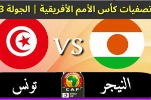 نتيجة وملخص أهداف مباراة تونس والنيجر اليوم في التصفيات الأفريقية 2019 بجودة عالية HD