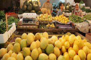 طرح الليمون بفروع مجمعات الأهرام الاستهلاكية بالقاهرة والجيزة.. بسعر 45 جنيه