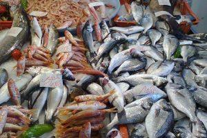 زيادة طرح الأسماك الطازجة بنسبة 20% بالمجمعات الاستهلاكية