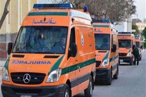 انقلاب سيارة على طريق البويطي/ الواحات يسفر عن مصرع شخصين وإصابة 33
