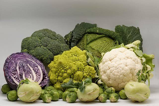 الخضروات الكرنبية
