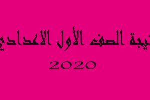 نتيجة الصف الأول الإعدادي الترم الأول لعام 2019/ 2020 رابط الإستعلام