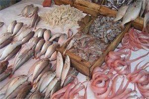 استقرار بأسعار الأسماك والمأكولات البحرية خلال تعاملات اليوم السبت بسوق العبور