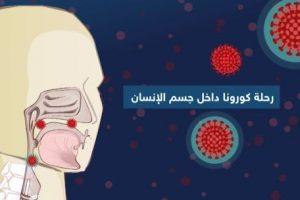 التفاصيل كاملة.. عن دورة الإصابة بفيروس كورونا
