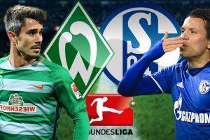 يلا شوت مشاهدة بث مباشر مباراة شالكه وفيردر بريمن اليوم السبت 30-5-2020 في الدوري الألماني